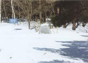 くらかけの雪.jpg