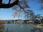 高松の池3.jpg