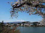 高松の池4.jpg