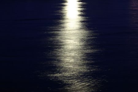 MoonLight&TailLight 1.jpg