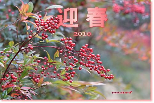 nenga2010.jpg